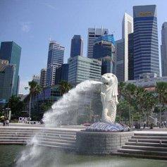 Singapore Surprise